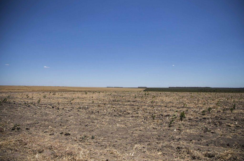Povos do Cerrado debatem direitos territoriais